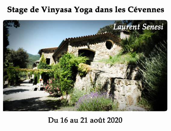 Stage de Yoga - Laurent Senesi